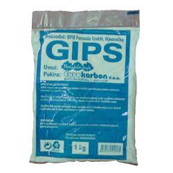 GIPS 1/1 EK